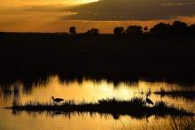 Florida - Tramonto al Merritt Island National Refuge
