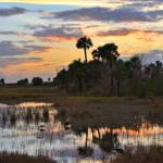 Lagune di Cape Canaveral